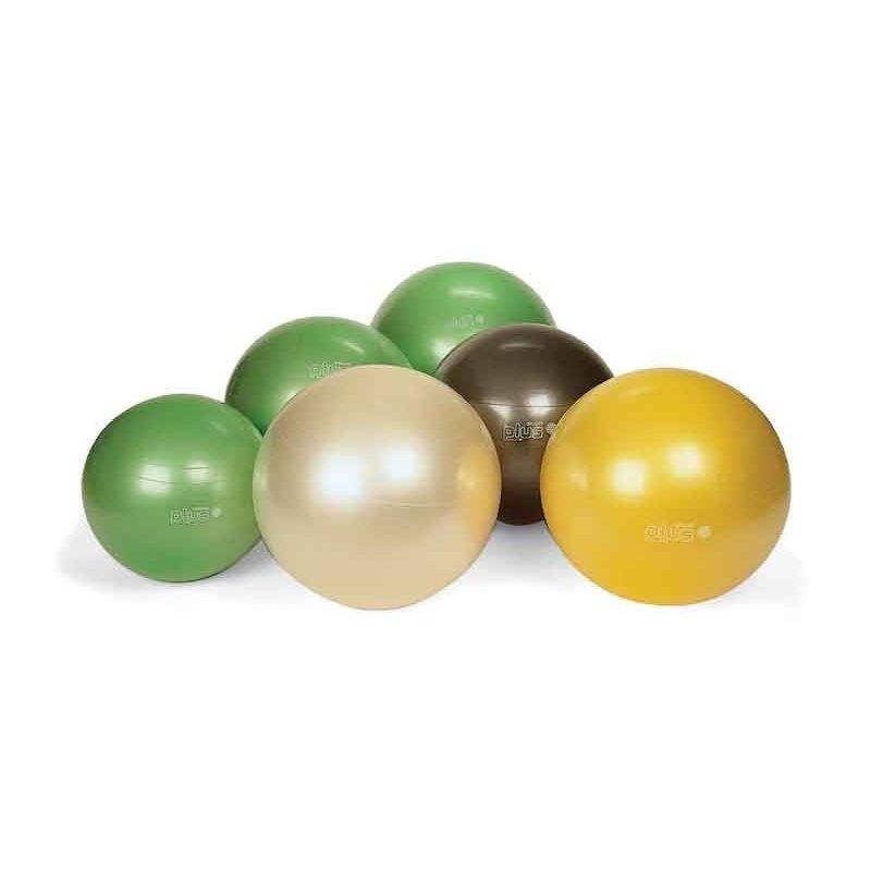 Gymnic Plus 55 BRQ gymball