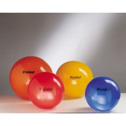 Physioball standard 95 cm - LEDRAGOMMA