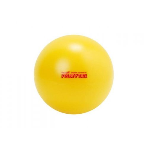 Volejbal V5 240g soft guma míč Gymn
