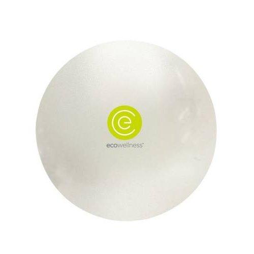 ECO Wellness gymball 65 cm