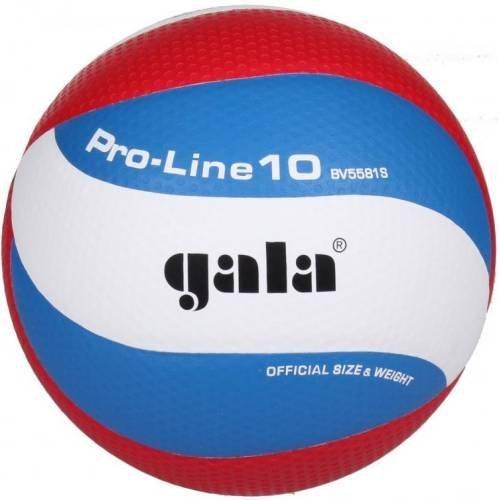 Míč volejbal Gala BV5581S Pro Line