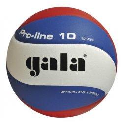 Míč volejbal Gala BV5121